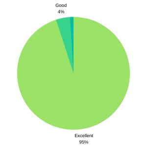 Pie Chart showing G5 95% Excellent IT Support Aberdeen